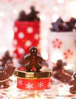 Baileys Irish Cream Gingerbread Chocolate Bites by theresahelmer