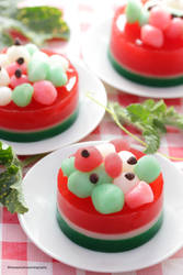 Watermelon Gelee with Homemade Shiratama Dango