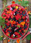 3 O'clock This Afternoon, My Berry Harvest