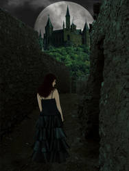 Labyrinth by mirameli