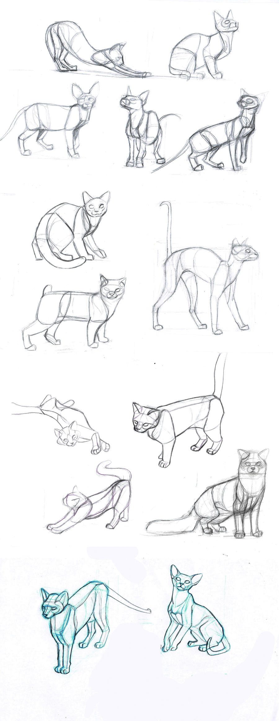 FREE Four Legged Creature Poses MORE 446662699 further Hand Exercises 171155993 additionally Cat S Body 284727567 also Anime Eyes Sad likewise Corazon. on anatomy drawing tutorial