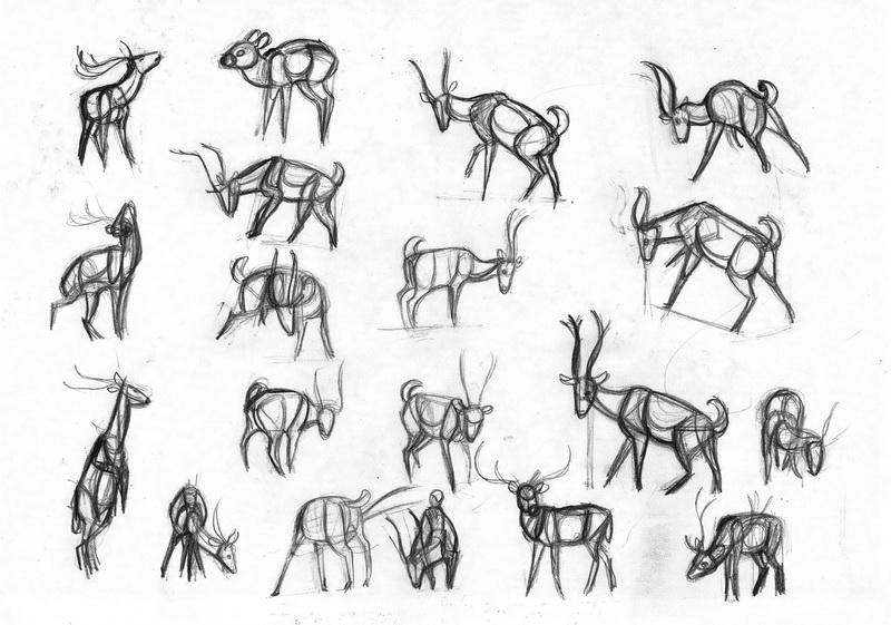 Cheetal deer studies from videos by sofmer