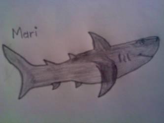 SHARK WARS: Mari by TheIceman1