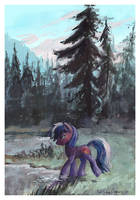 Mirror lake (Free YCH). by SatynaPaper