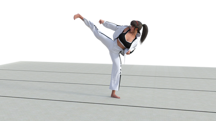 Hitomi shows proper Yop Cha Jirugi form by angryonion87