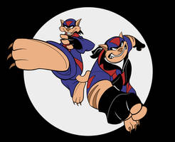 SKRATCHJAMS: Swat Kats by UsmanHayat