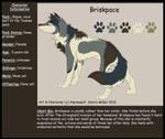 Briskpace-R