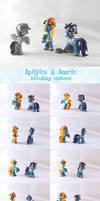 Spitfire and Soarin customs