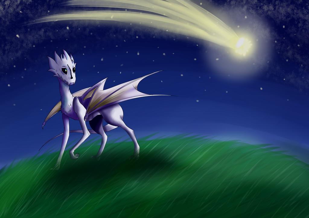Wish upon a shooting star by Moraja
