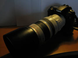 My EOS 30D and 100-400L