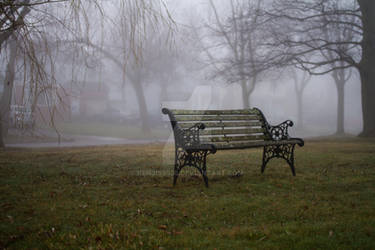 A Bench in the Fog