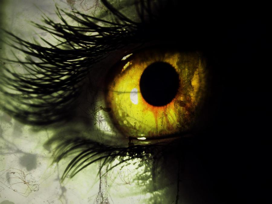 yellow eyes - photo #33