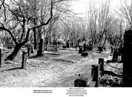 Cemetery manga background by Attlebridge