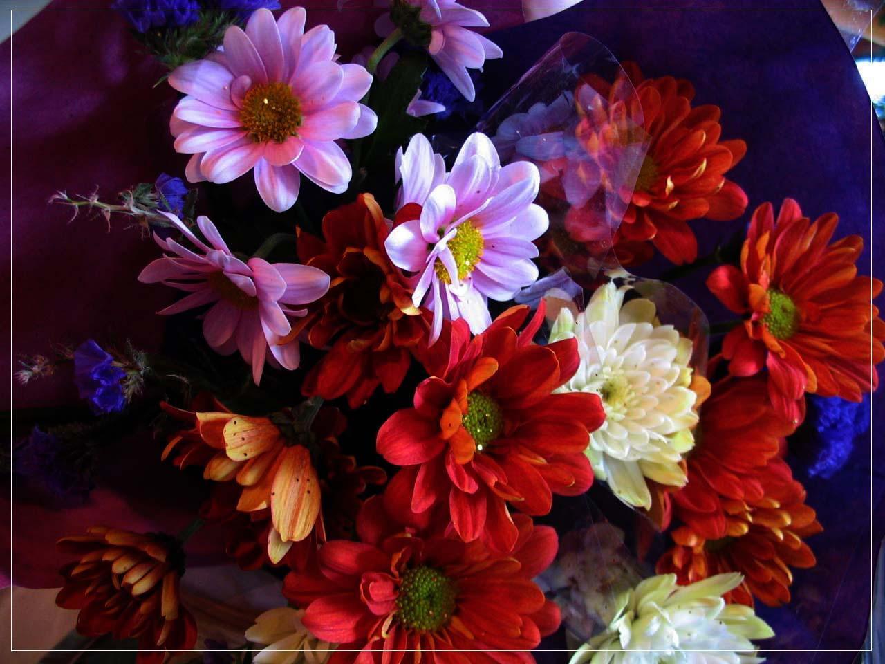Birthday Flowers by wishez on DeviantArt