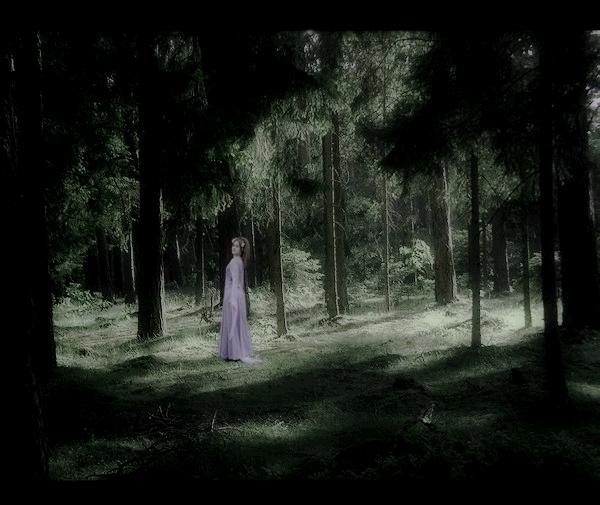 Elven Forest by AlexTheGuardain