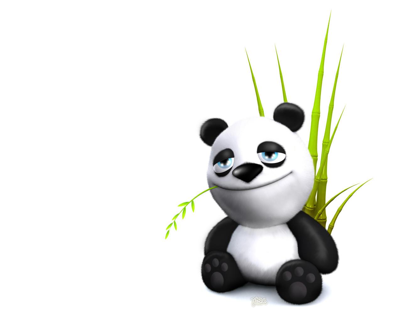 panda - come back by nicobou
