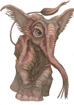 Smallephant - colored