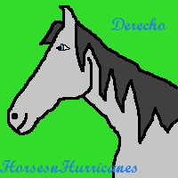 Avatar for HorsesnHurricanes by celuthea
