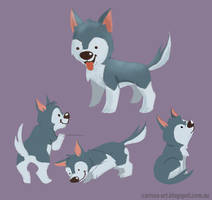 Pups coloured by tissa