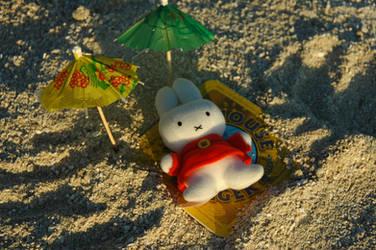 Miffa's teddy on the beach by miffona