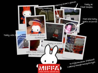 Miffa's on the run by miffona