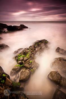 . : nature's pier : .