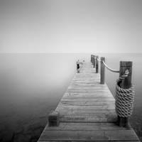 :: quiet place ::