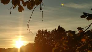 Sunset with venus