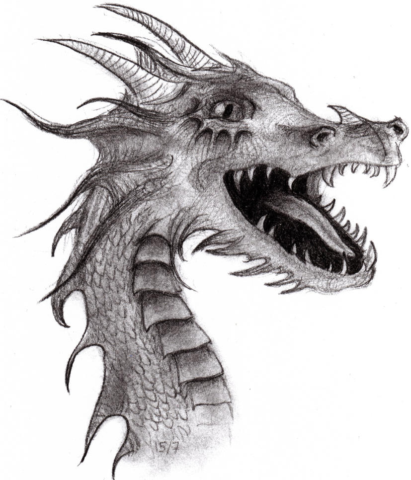 Dragon drawing by AsYourFallingDown on DeviantArt