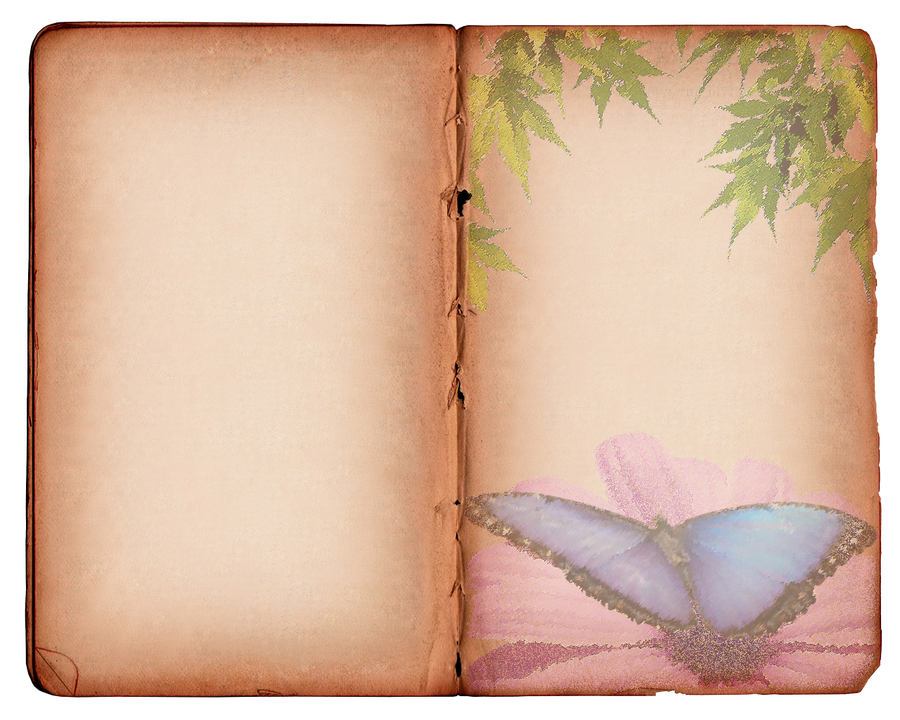 Butterfly Texture-Background by cazcastalla