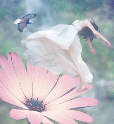 Freedom by cazcastalla