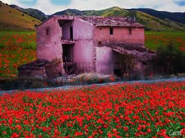 Spring Ruins by cazcastalla