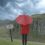 Rainy Day Contemplation by cazcastalla
