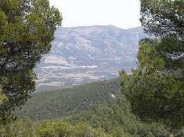 Spanish Countryside 6