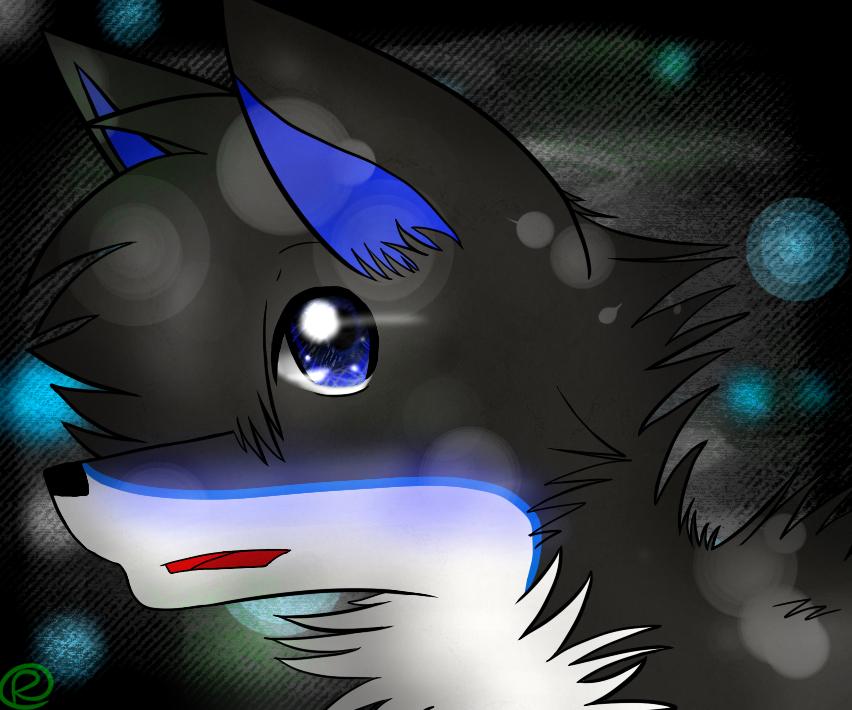 RukiaTheWolfie's Profile Picture