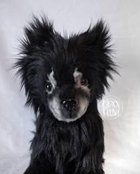 Pet Pomeranian Plush