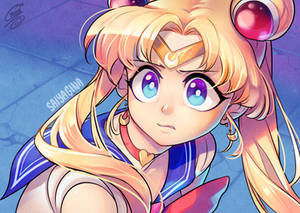 The Sailor Moon redraw thing