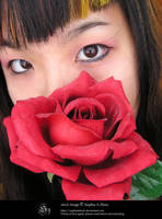 stock 765: rose eyes by sophiaastock