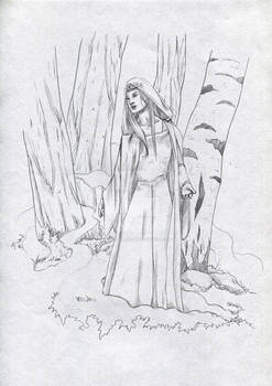 Mirdre of the Silverwood