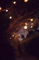 Magic Lanterns by MarcoRibbe-de