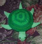 Knit Turtle