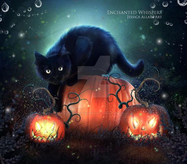 Black Cat by EnchantedWhispersArt