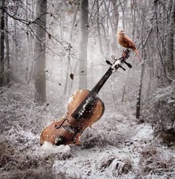 Frozen In Time by EnchantedWhispersArt