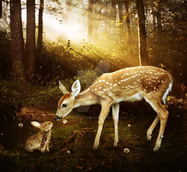 Bambi by EnchantedWhispersArt