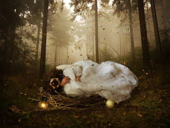The Nest by EnchantedWhispersArt