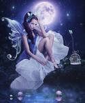 Moonlight-Enchantments