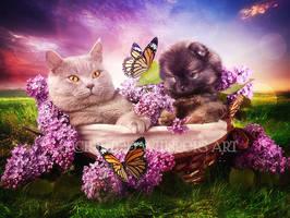 Basket-of-cute by EnchantedWhispersArt