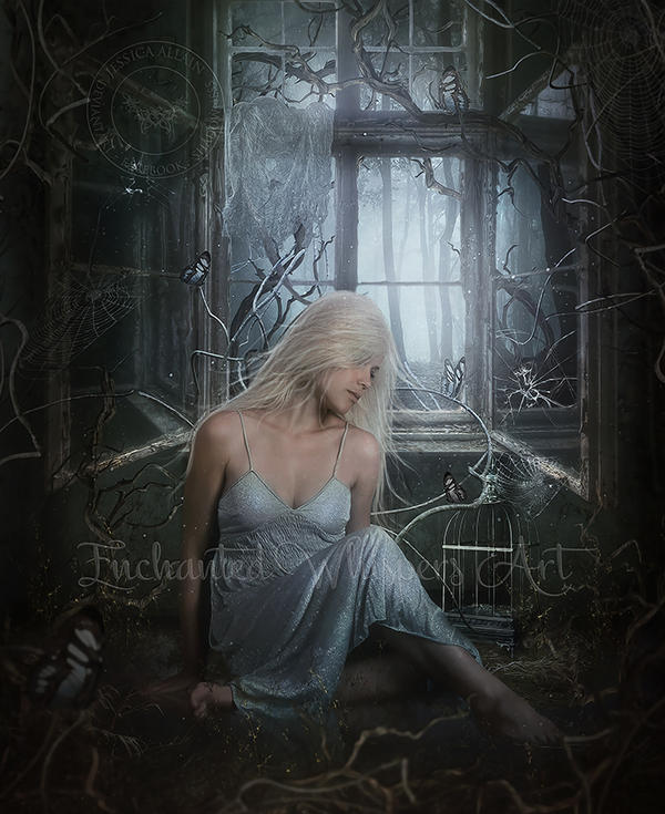 Windows To My Soul: Window-to-my-soul By EnchantedWhispersArt On DeviantArt
