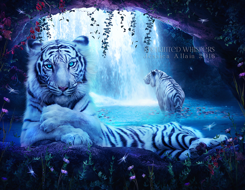 White-Tigers