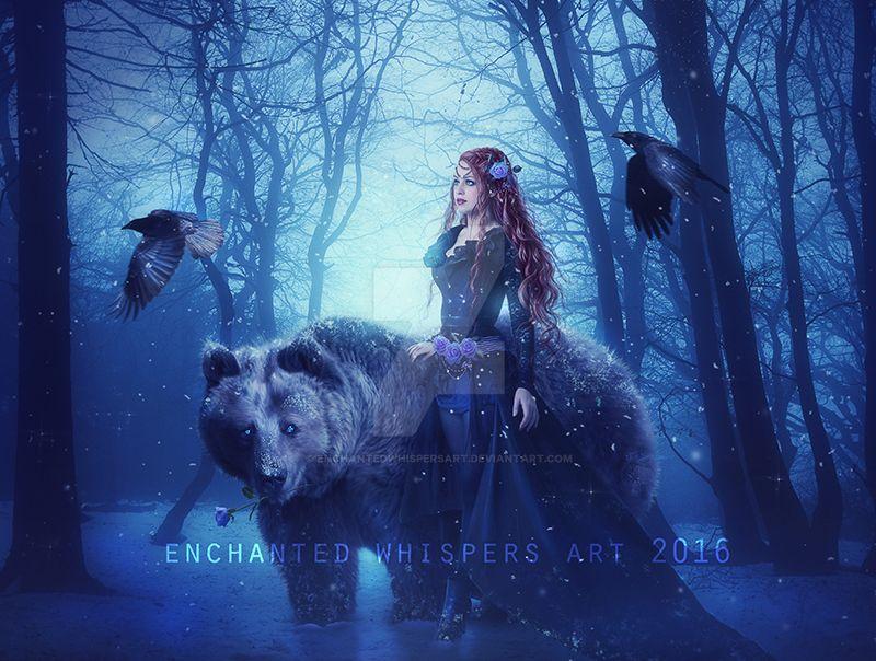 Winter's-Rose by EnchantedWhispersArt